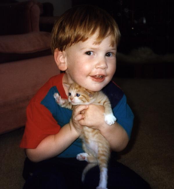 A little boy holding a kitten
