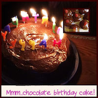 A picture of a dark chocolate cake with birthday candles on it, and an inset of the same recipe prepared in cupcake form, crowded together on a white plate, with a single raspberry decorating each cupcake